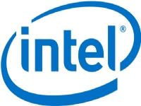 Intel Remote Management Module 4 Lite 2 - Adapter for fjernadministration