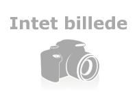Bilde av 00027606 Hjul Med StÅlaksel