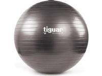 Tiguar Gym ball with filling Body Ball 3S 70cm gray